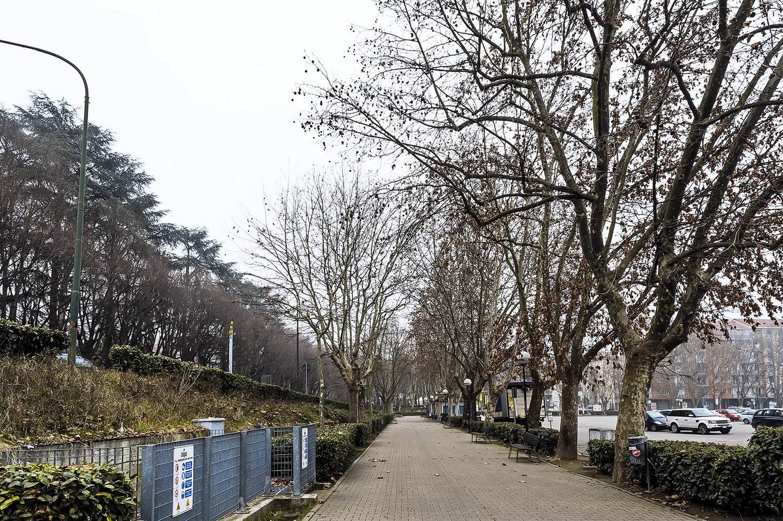 Viale alberato (lato Parco della Resistenza)